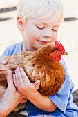 A Child holding a Chicken