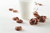 Double chocolate chip cookies with a glass of hot milk