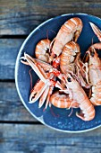 langoustines, prawns, seafood