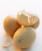 Hen's eggs, whole and a broken shell