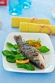 Grilled trout in vine leaves with fresh spinach