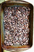 Lots of roasted cocoa beans in a container (top view)