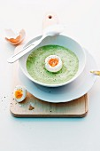Cream of spinach soup with a boiled egg