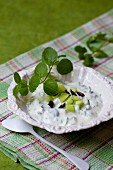 Tzatziki with cucumber, mint and olives