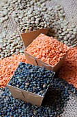 Assorted types of lentils, some in cardboard containers