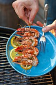 Grilled prawn skewer on a plate