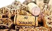 Wine corks on slices of mehogni