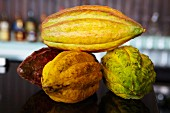 Four cocoa pods