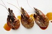 Three Raw Shrimp in Soy Sauce
