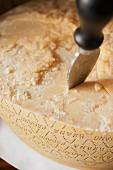 Parmesan mit Käsemesser (Close Up)