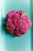 Purple cauliflower (view from above)