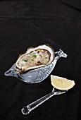 Frische Auster mit Zitrone
