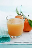 Satsuma and grapefruit drink