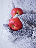 Childs hands in gloves holding red apples