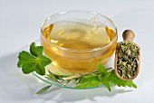 Herbal tea in a glass cup (oat, stinging nettle, lady's mantle)