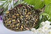 A mix for herbal tea with mistletoe, hawthorn leaves, stinging nettles, valerian, hibiscus flowers and lavender