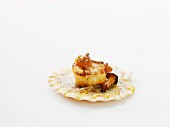 Fried scallop with mushrooms against a white background