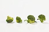 Four broccoli florets