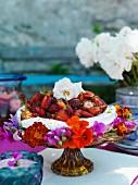 Baisertorte mit Erdbeeren auf Tortenständer
