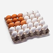 American Flag Eggs in Carton