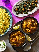 Chicken Balti (chicken curry, India) with spinach and saffron rice