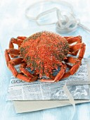 A cooked spider crab