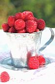 Raspberries in a zinc cup