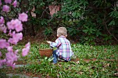 Young Boy With Basket Kneeling in Garden