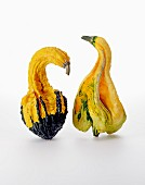 Two ornamental gourds