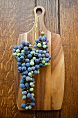 Wild grapes on wooden cutting board