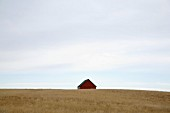 Lone Barn in a Field