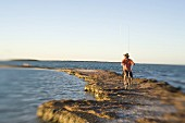 Man Riding Bicycle With Fishing Rods on Rocky Jetty, Florida Keys, USA