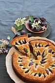 Pflaumenkuchen mit Kuchenstück auf Tortenheber