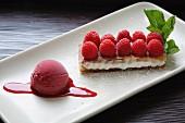 Raspberry Tart and Sorbet on White Plate