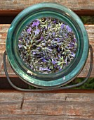 Fresh Lavender in Open Jar, High Angle View