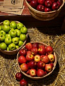 Verschiedene Apfelsorten in Holzkörben