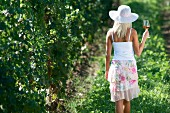 Young woman walking in vineyard with glass of rosé wine.