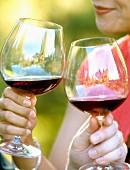Paar trinkt Rotwein in einem Weinberg