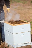 Honey being collected using smoke