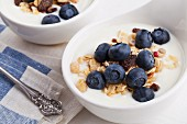 Natural yogurt with cereals and blueberries in a muesli bowl