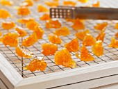 Candied orange pieces drying on a wire rack