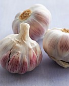 Two Garlic Bulbs; One Broken