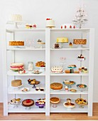 Various desserts, cakes and biscuits on a white shelf