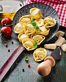 Tortellini, tomatoes, basil and parmesan