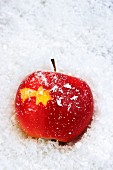 A Christmas star carved into a red apple