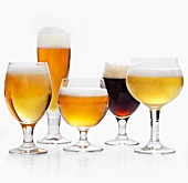 Many Types of Beer in Varied Glasses