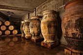 Amphorae used for ageing Savagnin (and sometimes Trousseau) in winery of Domaine André et Mireille Tissot, Montigny-lès-Arsures, Jura, France