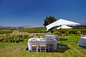 Tables set for lunch in garden of Elgin Ridge, Elgin, Western Cape, South Africa