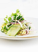 Mixed leaf salad with cucumber, onions and coriander