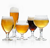 Various types of beer in glasses